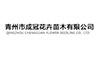青州市成冠花卉苗木有限公司