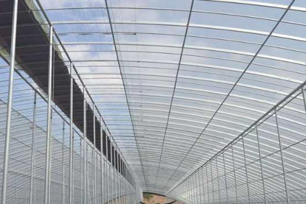 连栋温室建设