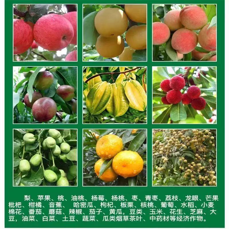 圣女果上色素-想買實惠的圣女果增甜藥-就到恒創農業技術