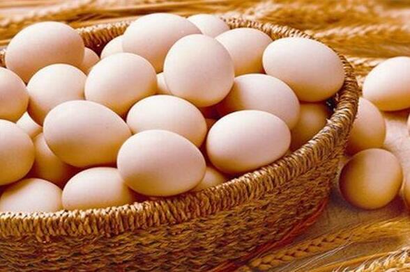 廈門禽蛋配送-可信賴的禽蛋配送地三鮮蔬菜配送提供