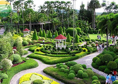 庭院园林绿化养护