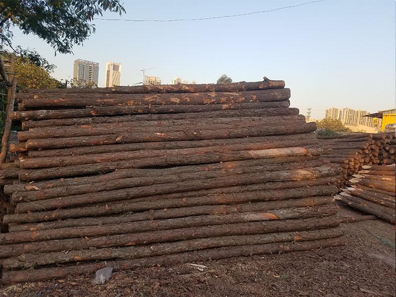 声誉好的松木桩供应商当属川禾建材_进口木方
