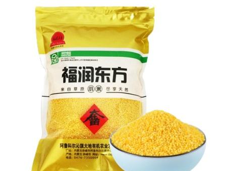福潤東方小米新品上市