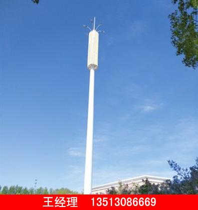 润达的美化通讯塔价钱怎么样 哪里有美化通讯塔